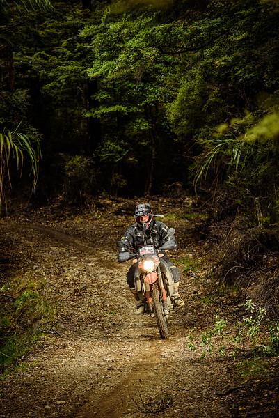 2019 KTM New Zealand Adventure Rallye (1340).jpg