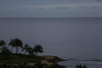 2013-05-06 Oahu