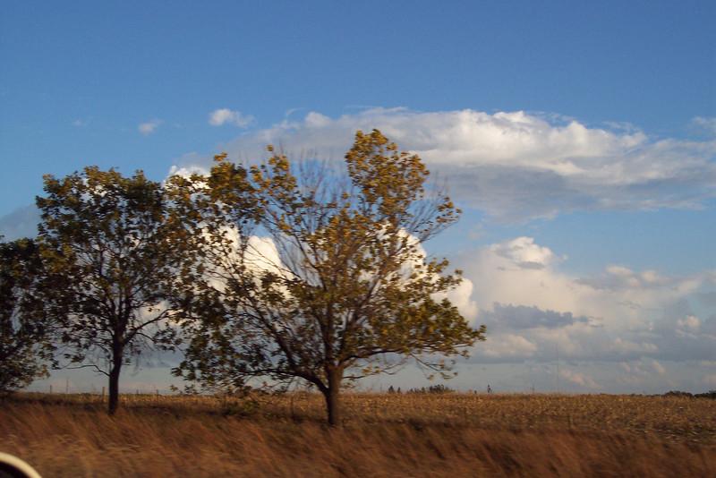 Autumn 07 014.jpg