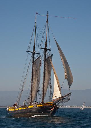 Tall Ships under sail