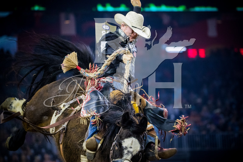 RodeoHouston 2017