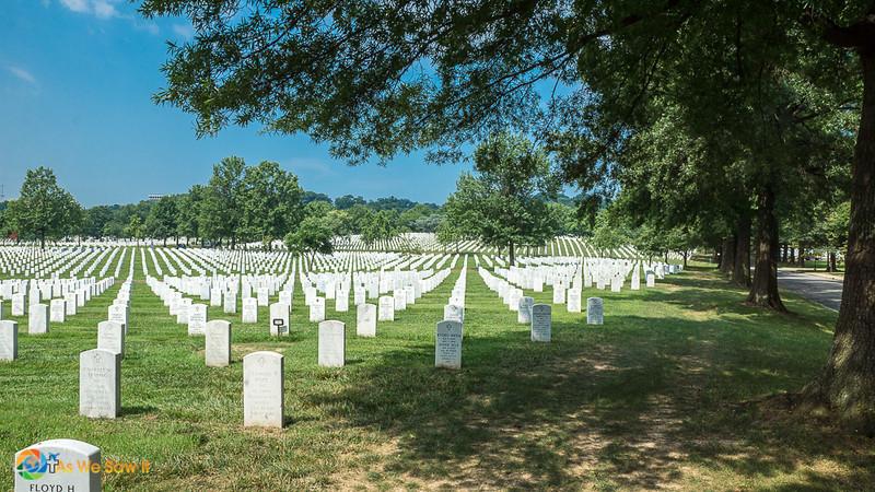 Arlington-03365.jpg