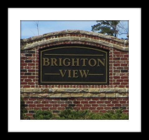 Brighton View Cumming GA (25).JPG