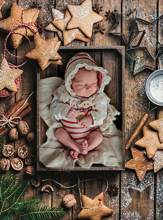 Elody Newborn 2018