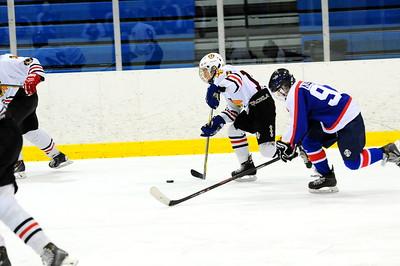 Game 2 - Michgan Ice Hawks vs Metro Jets