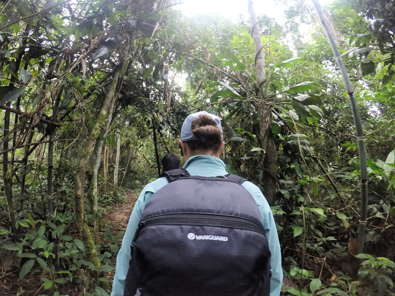 Hiking in the Amazon with Vanguard camera bag