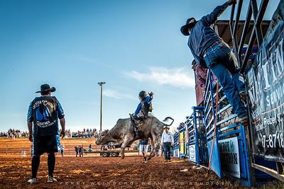 Bulls, Broncs, & Barrels