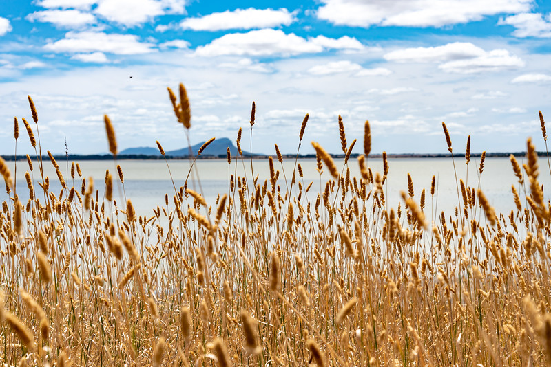 Lake Linlithgow