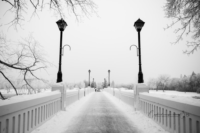 181212 Frosty 0011-2.jpg