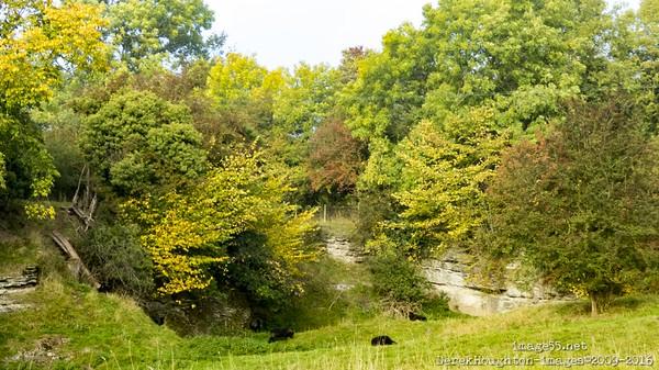Wenlock Eddge