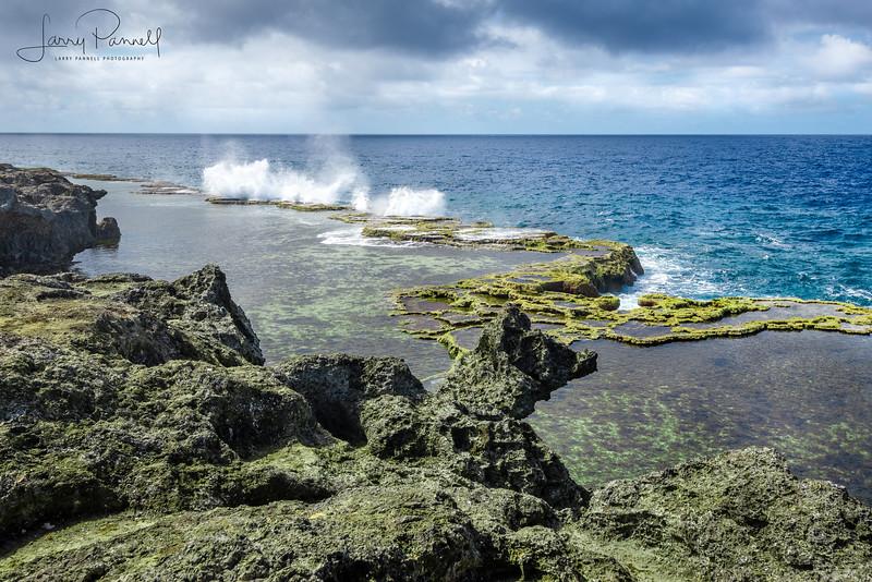 Rocky Coast of Tonga