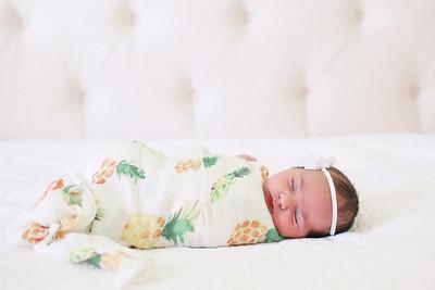 Amelia: Newborn