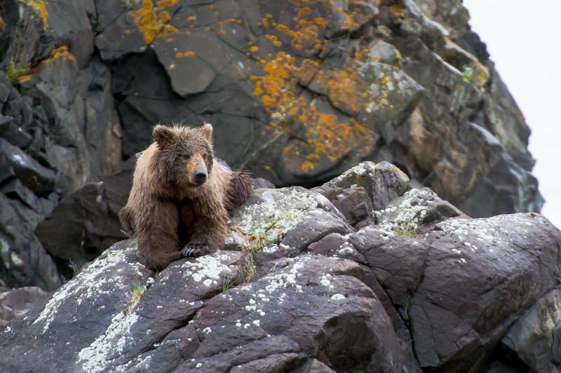 Alaska-9863.jpg