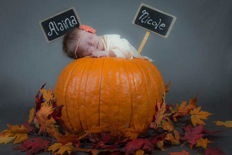 Alaina New Born