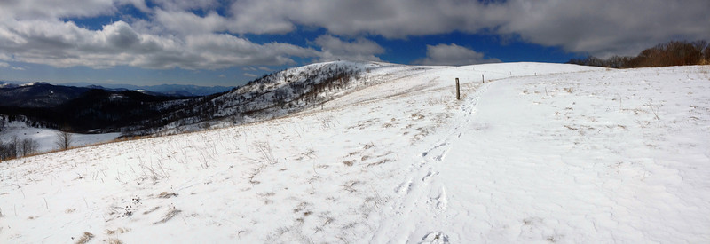 From where I hit the AT, I could have made a quick jaunt up to the summit of Max Patch but decided to save it for the finale...