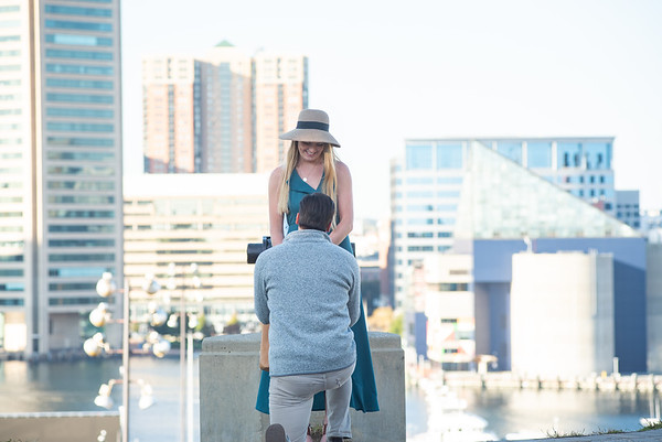 Nicks picture perfect proposal, Baltimore MD.