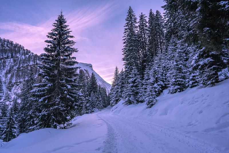 Winterthur-Winter-04294.jpg