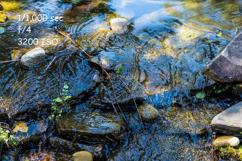 Running-Stream-11-2.jpg
