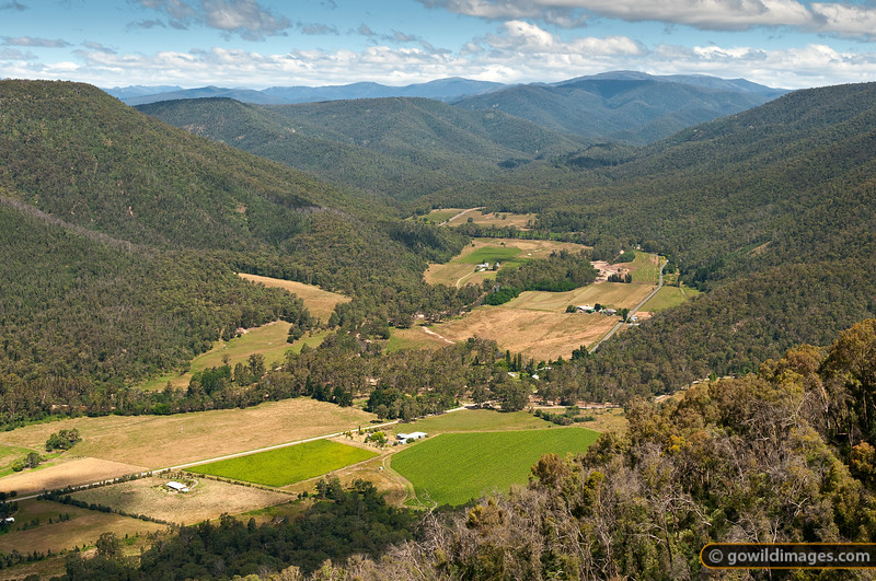 View to the east from Power's Lookout, Cheshunt, King Valley. Crosscut Saw and Mt Howitt in the distance.
