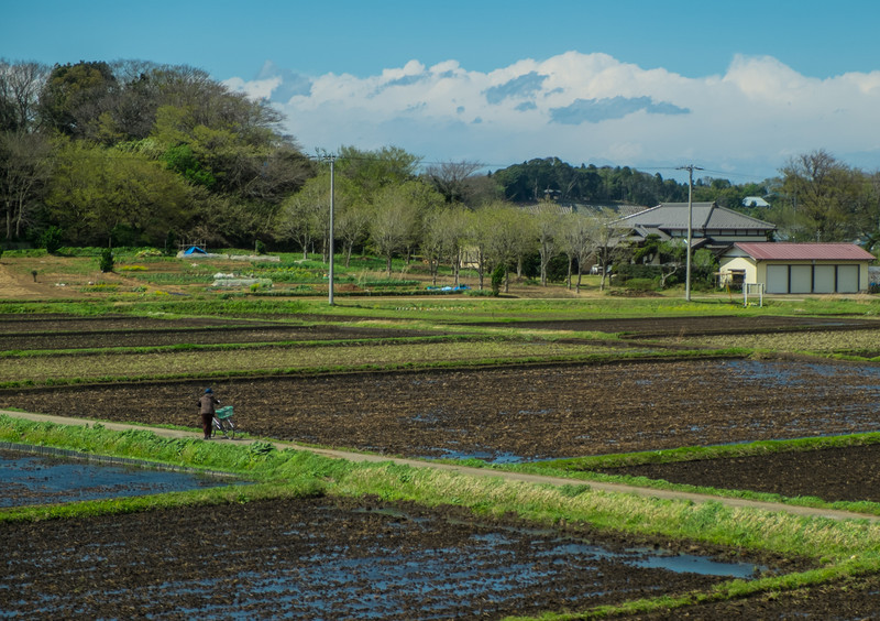 Noshiro to Tokyo and Home Days 13 and 14 (188 of 141).jpg