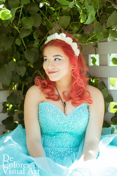 Liz's Sweet Sixteen