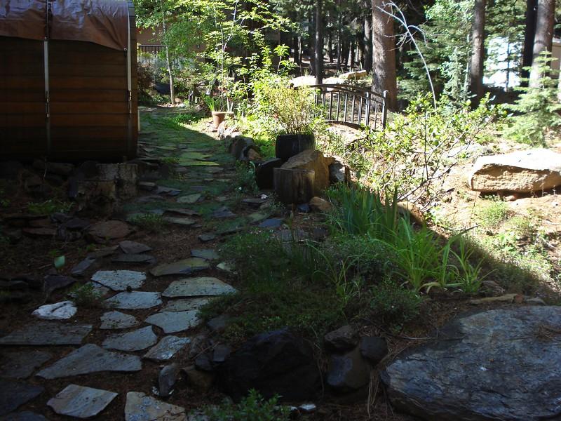 06-06-2015 First Watering Backyard Project.JPG