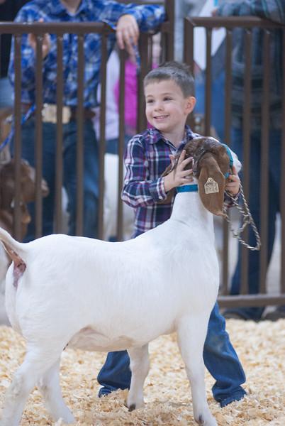 kay_county_showdown_goats_20191207-99.jpg