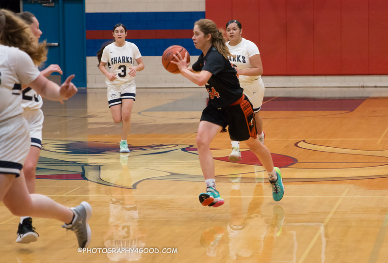 Varsity Girls Basketball 2019-20-4552.jpg