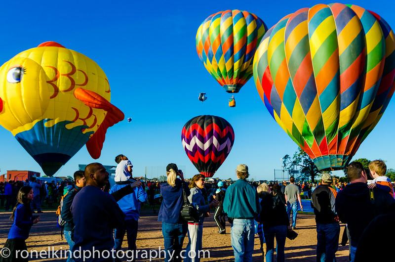 Balloons-0322.jpg