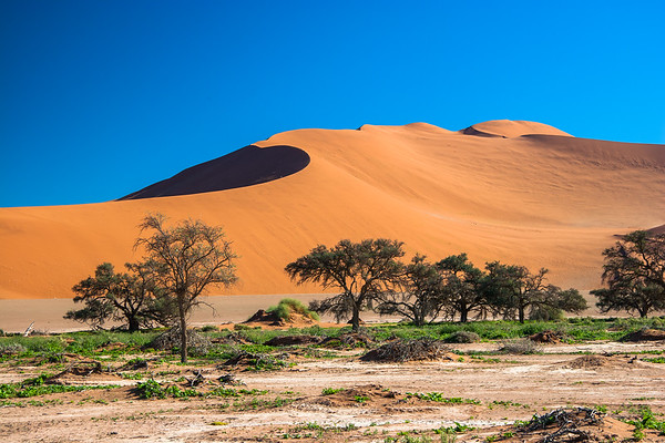 Sothern Africa