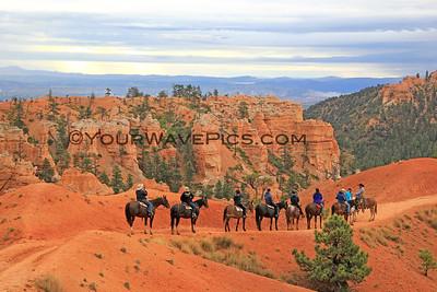 Utah/Zion/Bryce/Yellowstone/Tetons Sept-Oct 2016
