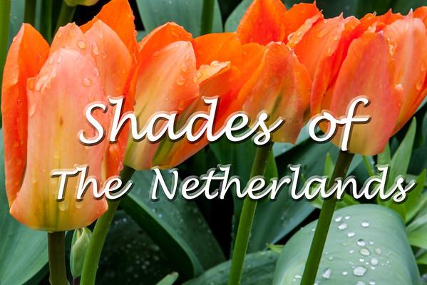 The Netherlands 2012 (Julie)