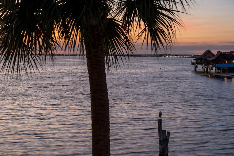 Tampa Jam-1395.jpg