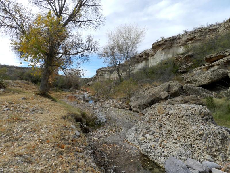 Chinati Hot Springs creek.jpg