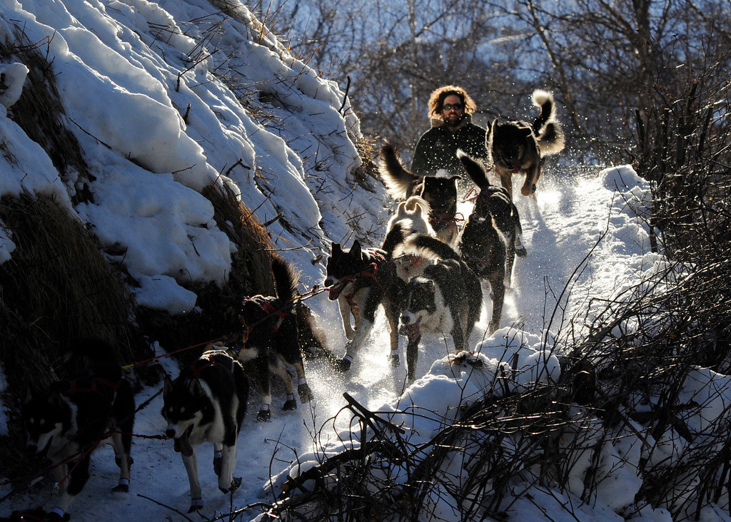 . In this March 3, 2014 photo, Rick Casillo comes over the last drop as he comes down the steps onto the Happy River between the Finger Lake and Rainy Pass checkpoints heading to Puntilla Lake, Alaska, during the 2014 Iditarod Trail Sled Dog Race. (AP Photo/The Anchorage Daily News, Bob Hallinen)