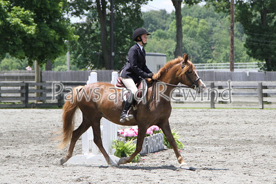 Sussex County Benefit Show June 15, 2013
