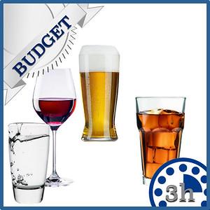43101 Open bar Budget