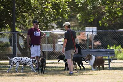Barney visits his friends at the Farmington Hills Dog Park 7/7/2018
