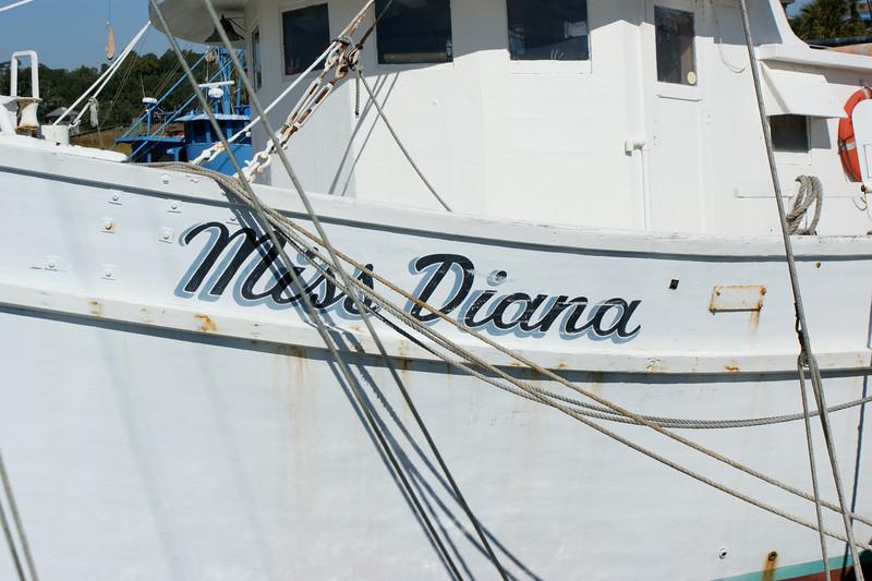 Campaign, Shrimp Boat 033.jpg