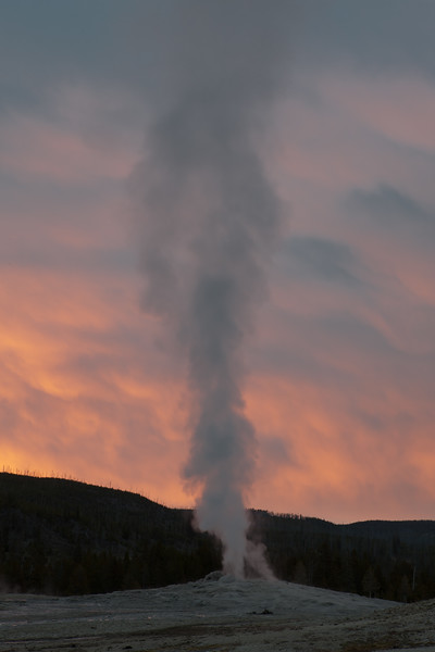 Old Faithful Waits