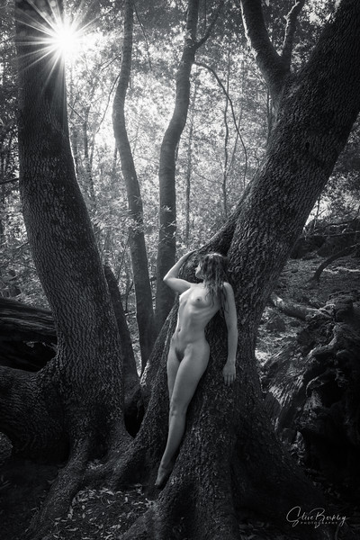 Forest Figures II (B&W)