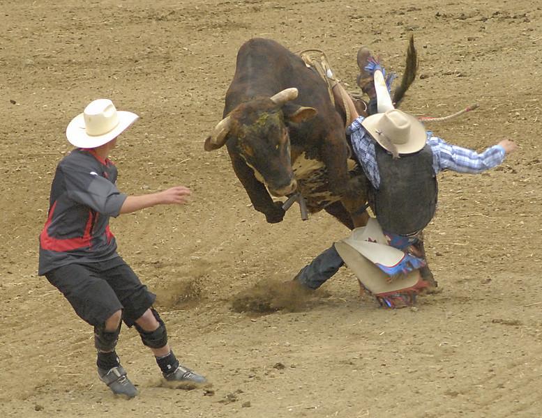 Coombs Bullarama 2008-2-223A.jpg