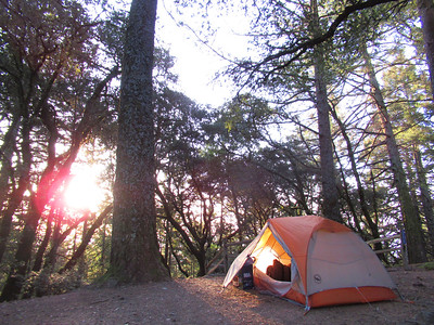 Mt. Tam Pantoll Camp/Hike: Apr 13-15, 2018