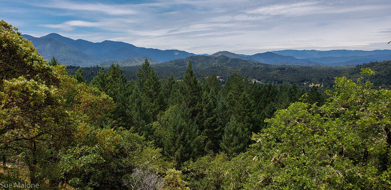 hiking Cathedral Hills-15.jpg