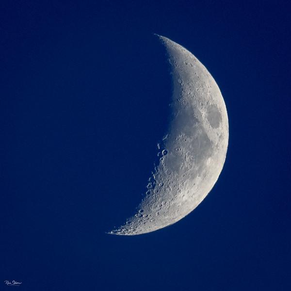 Da Moon-2.jpg