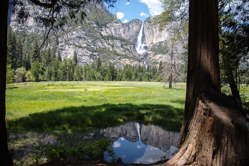 Yosemite_2016_Park-53.jpg