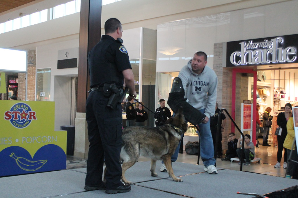 . Kristi Garabrandt � The News-Herald <br> Mentor K-9 officer, Terry Wurgler and K-9 Titan perform an officer protection demonstration added by Dennis Harmon of RTA during the 36th Annual Heroes Day held at Great Lakes Mall, May 12, 2018.