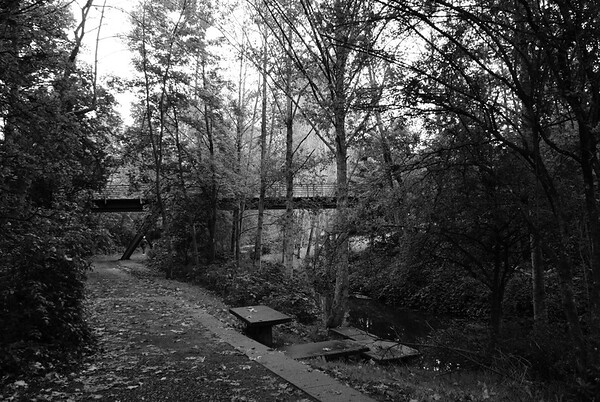 Colquitz River Park