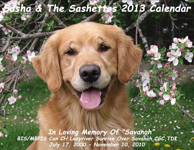 Sashette Calendar 2013