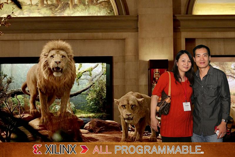 2079-Xilinx-Lion.jpg